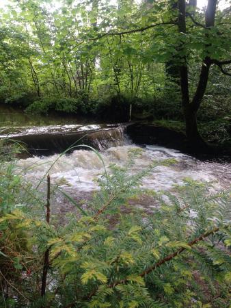 Penycae, UK: photo1.jpg