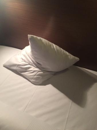 Hotel am Hirschgarten: zu klein der Kissen...