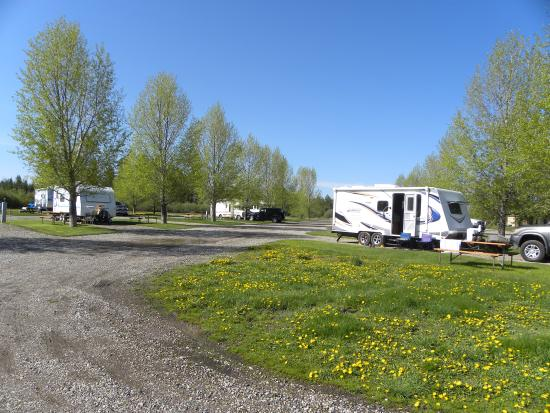 Island Park, ID: Looking at the RV Park