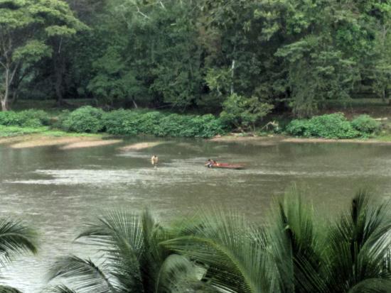 Boca Sabalos, Nikaragua: View of Rio San Juan, from Reserva Montecristo