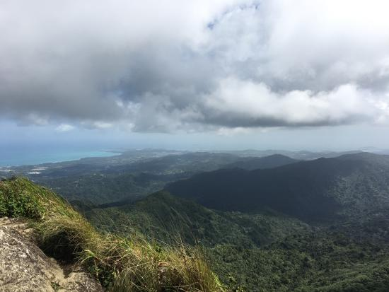 Island Walkers - El Yunque : Almost to the top