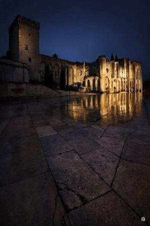 Avignon de nuit