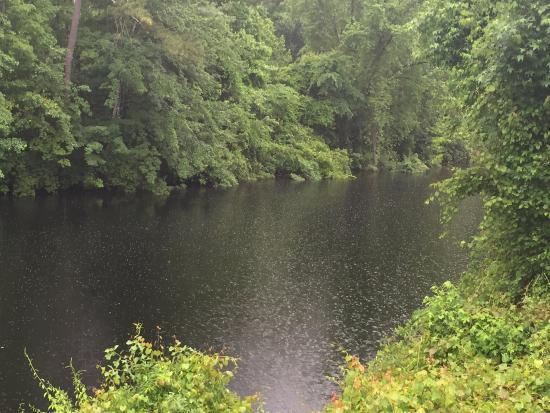 South Mills, Kuzey Carolina: Dismal Swamp State Park