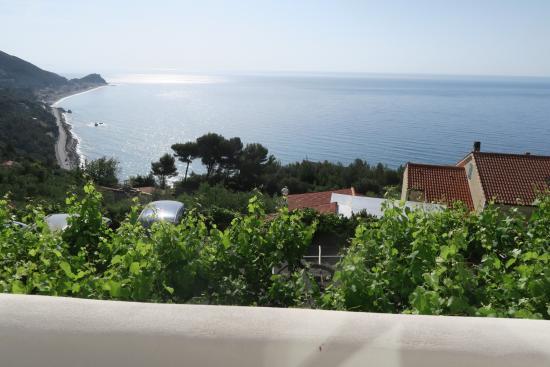 Hotel Ristorante La Gioiosa: photo2.jpg