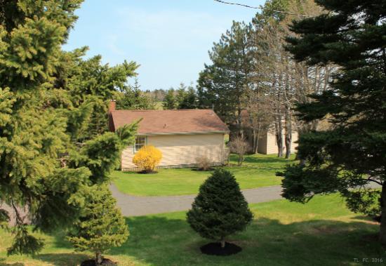 Fairways Cottages: 2016
