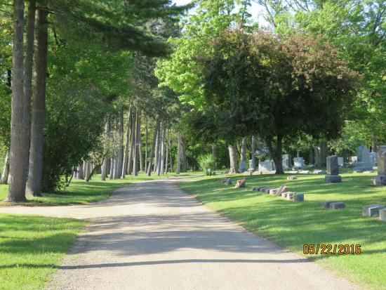 Coldwater, MI: A tree line lane in the southern cemetery.