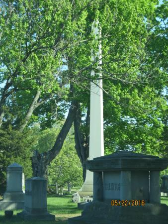 Coldwater, MI: Tallest monument in the southern cemetery.
