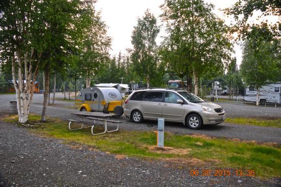 Tok, AK: nice campsites