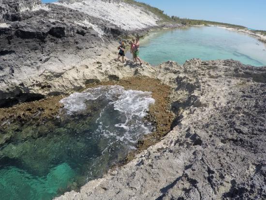Compass Cay Resmi