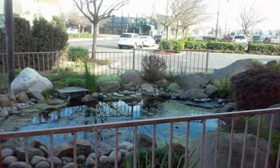 Holiday Inn Express Madera Yosemite Pk Area: FB_IMG_1464558694270_large.jpg