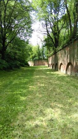 Zurawica, Poland: Fort XII Werner