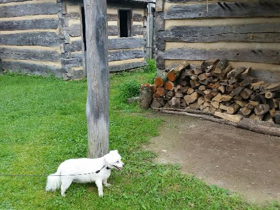 Fairmont, Virginia Occidental: 20160529_141820_large.jpg