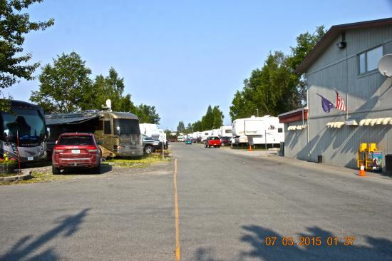Golden Nugget RV Park: campsites