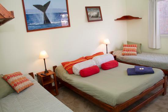 La Tosca Hostel: Habitacion Cuadruple Suite