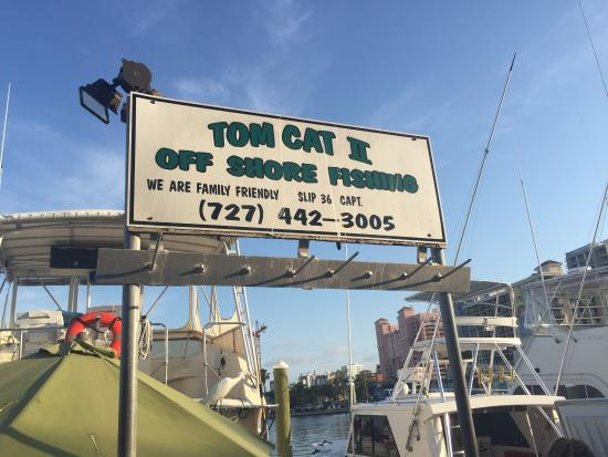 Tom Cat II Charters: photo1.jpg