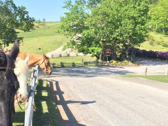 The Cataloochee Ranch: 13 years and counting ...