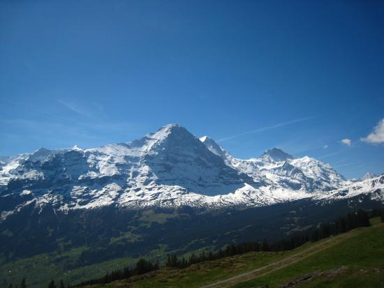 viewed from Bussalp: Eiger north face(center), Monch (behind Eiger) and Jungfrau to the right.