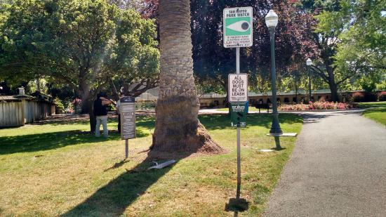 Сан-Матео, Калифорния: Central Park's path to the garden