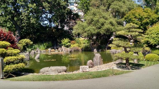 Сан-Матео, Калифорния: Beautiful pond