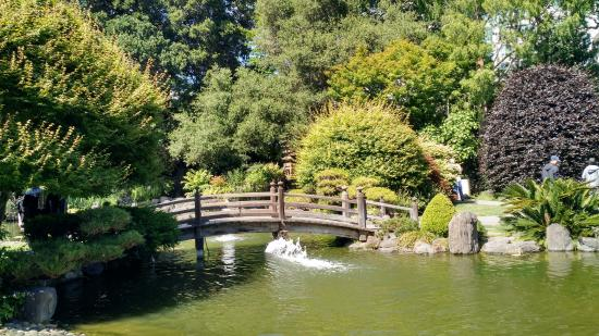San Mateo, CA: Mini bridge