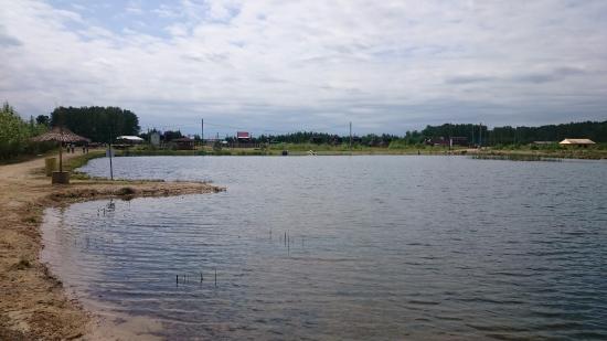 Sosnovskiy District, روسيا: Вид с пляжа