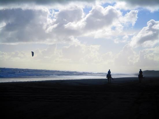 Muriwai Beach, Nueva Zelanda: Kite surf + horse treck