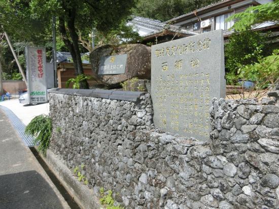 Saigomatsu