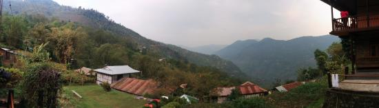 Martam, India: This is the view from the homestay of the valley below.