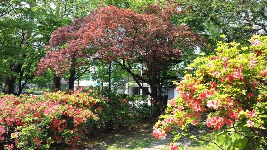 Nagayama Memorial Park