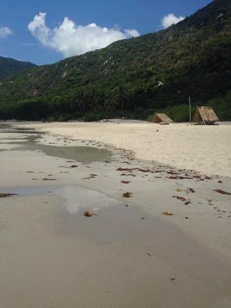 Jungle Beach VietNam صورة فوتوغرافية