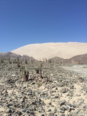 Mystery Peru : Hiking out
