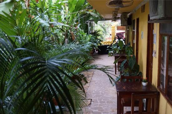 Hotel Aurora: photo6.jpg