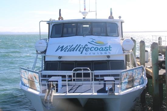 Cowes, Australia: boat for the cruise to seal colony