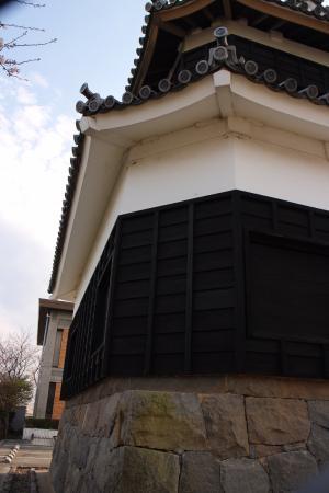 Hiji-machi, Japan: この角度だと、鬼門方向のカットが良くわかる