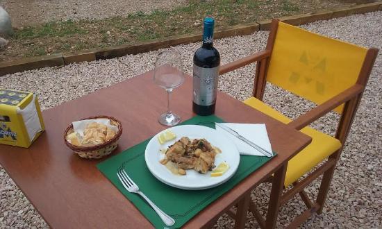 Sant Jaume dels Domenys, España: Pedimos Pollo al ajillo, con vino de D.O. Priorat. Muy bueno.