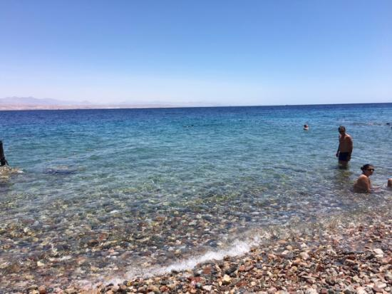 Migdalor Beach