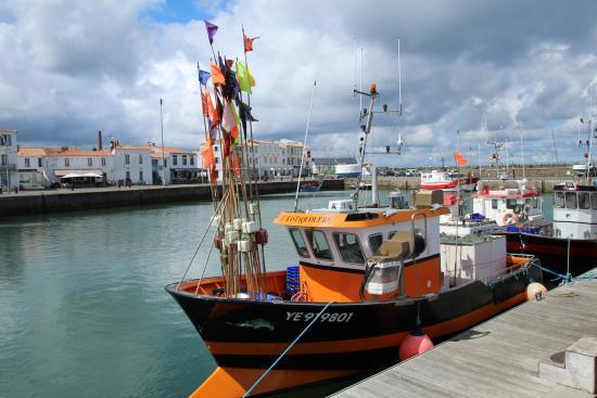 Port joinville picture of port joinville ile d 39 yeu tripadvisor - Yeu annonces bateau peche ...