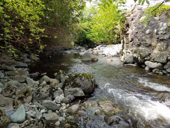 Dolgellau, UK: Nearby creek rocks you to sleep nightly