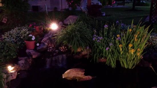 Spring Green Motel: Beautiful pond in back yard.