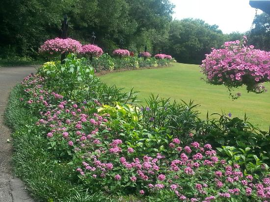 Theodore, อลาบาม่า: Beautiful color next to the Great Lawn.