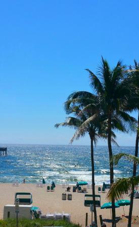 Wyndham Deerfield Beach Resort: View from oceanfront room.