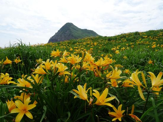 Onogame: Filled with kanzou flowers