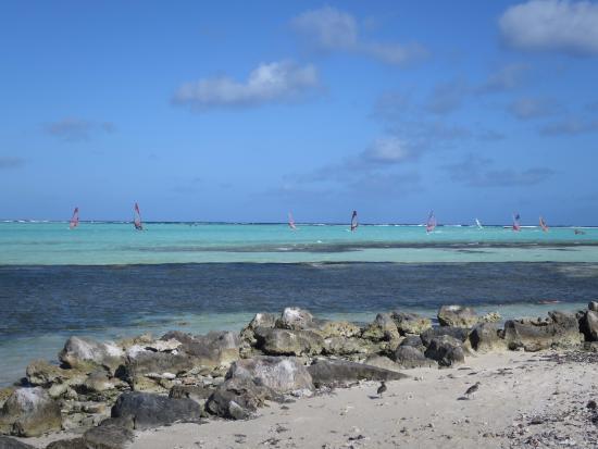 Kralendijk, Bonaire : So Many Out Today!