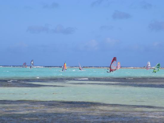 Kralendijk, Bonaire : Fun Times!