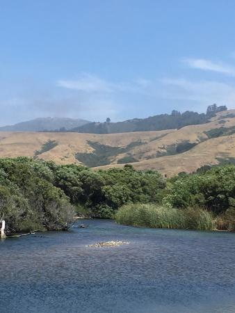 Andrew Molera State Park : One of our favorite places. It is an amazing like for families where you can cross the Big Sur R