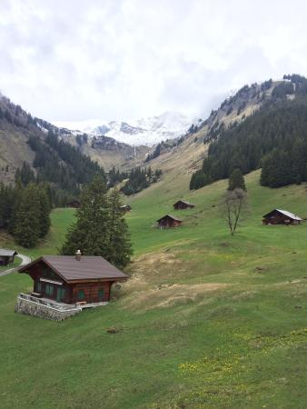 Grindelwald, سويسرا: photo6.jpg