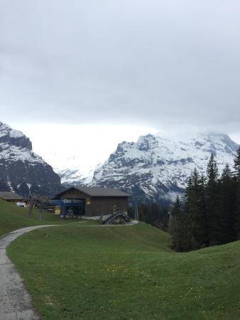 Grindelwald, سويسرا: photo8.jpg