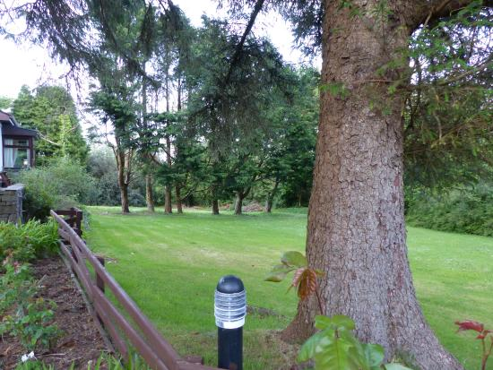 Pine grove bed breakfast oughterard irland for Dette exterieur