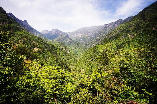 Qingliang Peak Natural Reserve