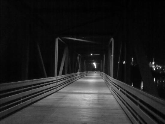 Inver Grove Heights, Миннесота: Black and white picture of the bridge.